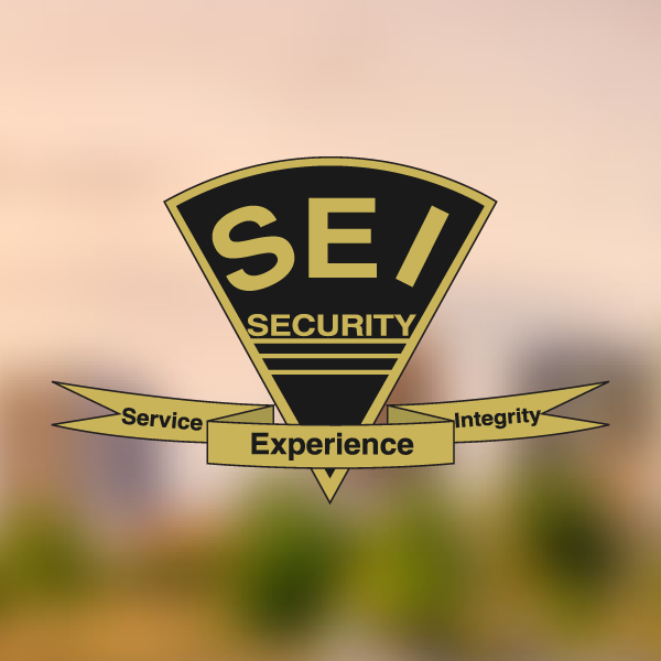 Home | Security Engineers, Inc