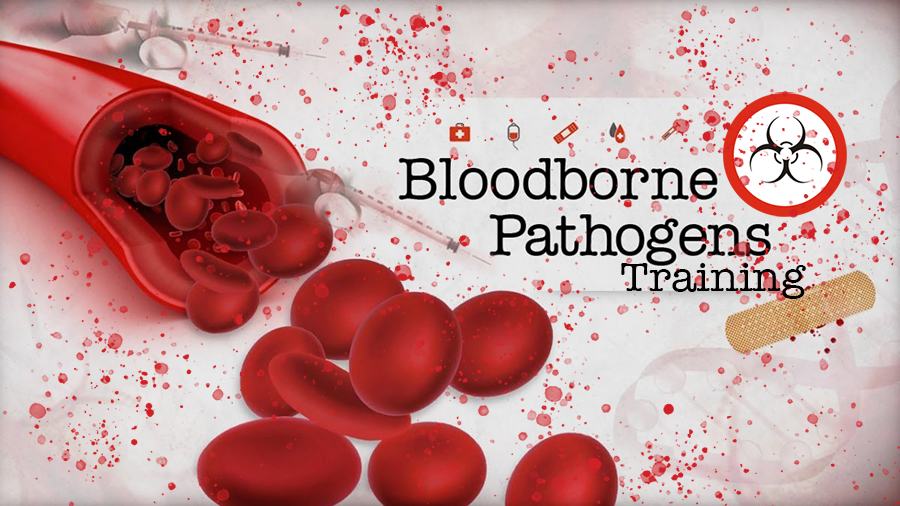 bloodborne-pathogens-class-training